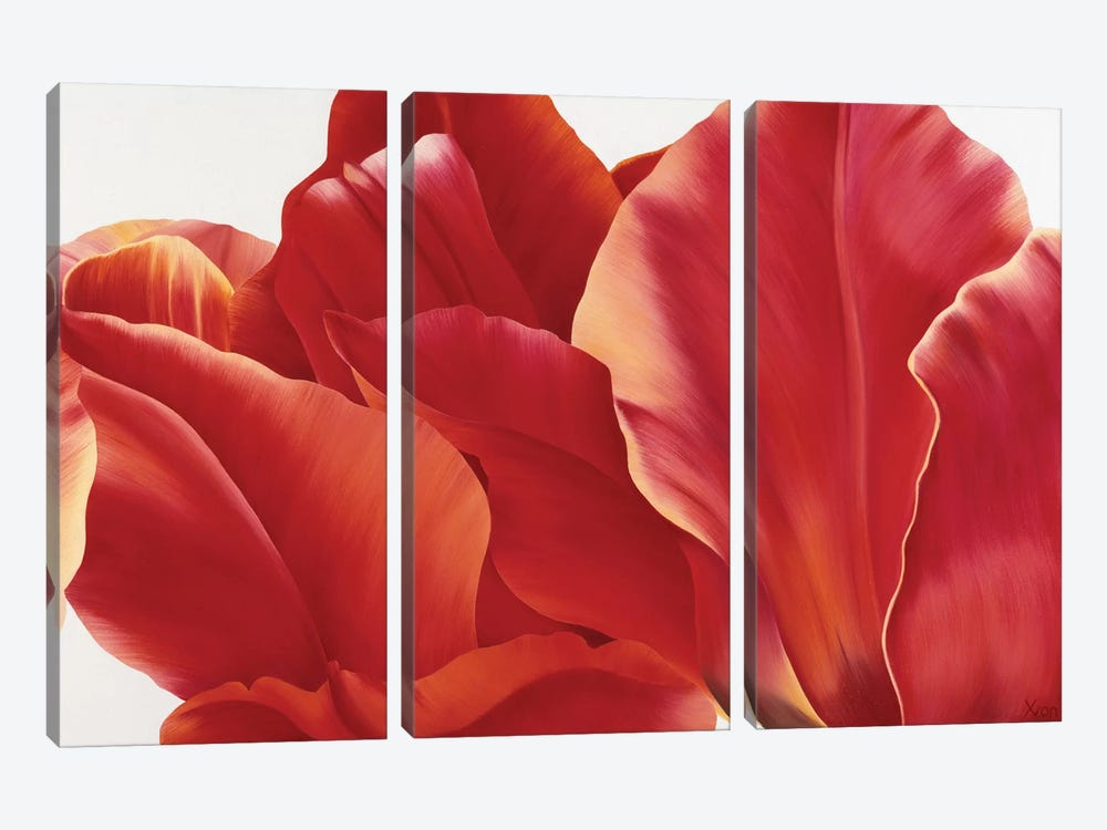 Fancy Flower I by Yvonne Poelstra-Holzhaus 3-piece Canvas Wall Art