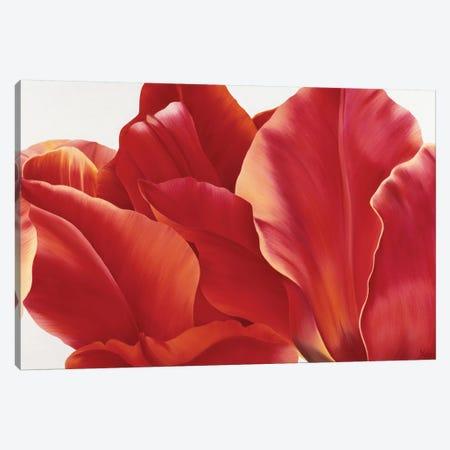 Fancy Flower I Canvas Print #YPH14} by Yvonne Poelstra-Holzhaus Art Print