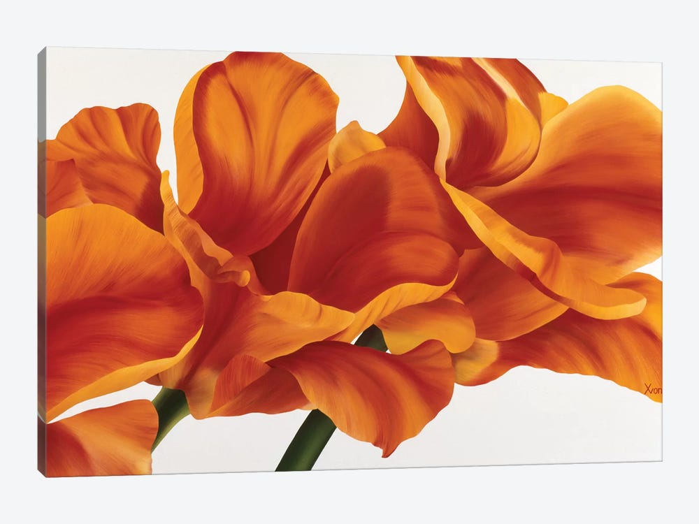 Fancy Flower II 1-piece Canvas Print