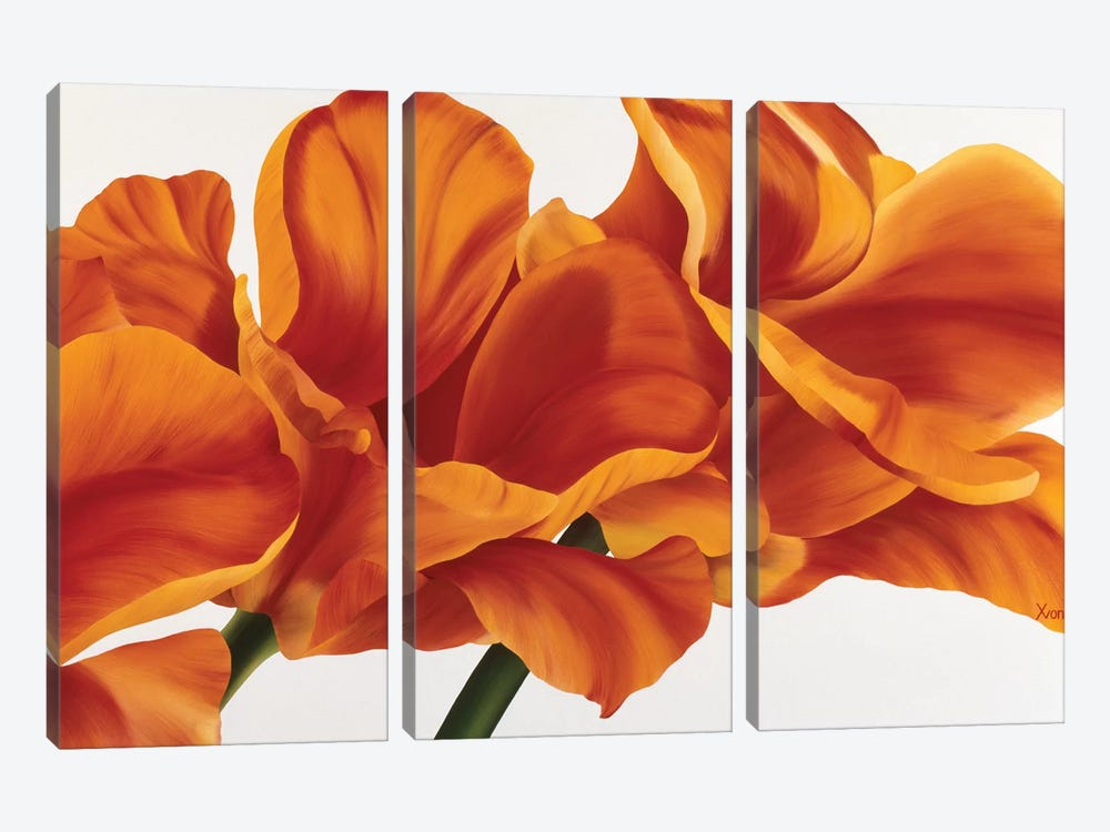 Fancy Flower II by Yvonne Poelstra-Holzhaus 3-piece Canvas Art Print
