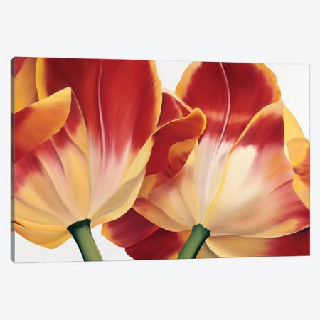 Fancy Flower III Canvas Print #YPH16} by Yvonne Poelstra-Holzhaus Canvas Print