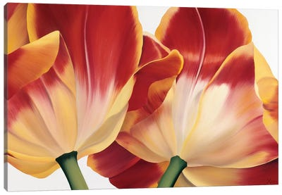 Fancy Flower III Canvas Art Print
