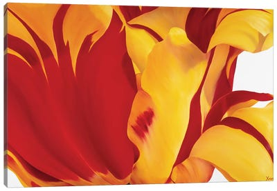 Floriade I Canvas Art Print