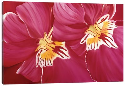 Floriade II Canvas Art Print