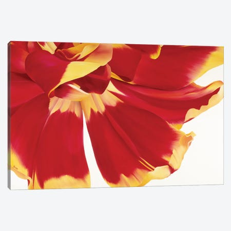 Floriade III Canvas Print #YPH19} by Yvonne Poelstra-Holzhaus Canvas Wall Art