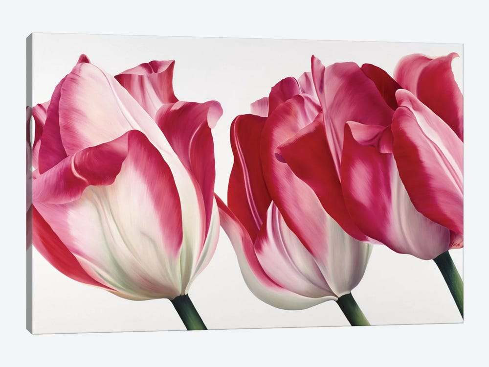 Floriade V by Yvonne Poelstra-Holzhaus 1-piece Canvas Wall Art