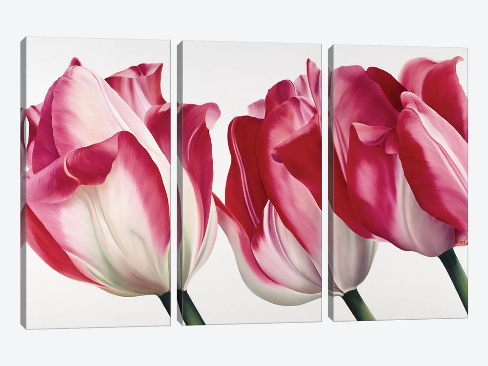 Floriade V by Yvonne Poelstra-Holzhaus 3-piece Canvas Artwork