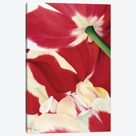 Flower Dream Canvas Print #YPH22} by Yvonne Poelstra-Holzhaus Canvas Print