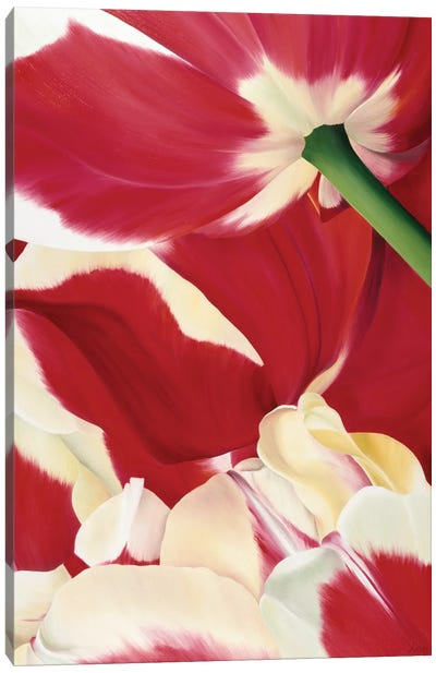 Flower Dream Canvas Art Print