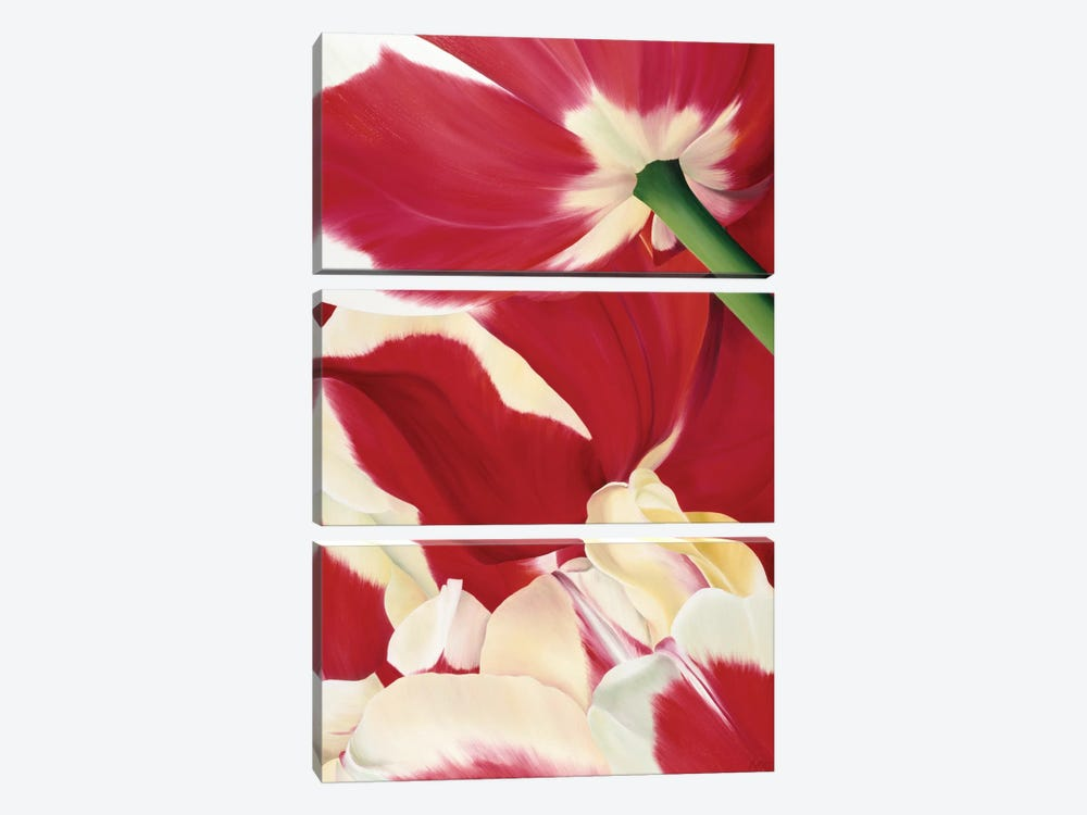 Flower Dream by Yvonne Poelstra-Holzhaus 3-piece Canvas Print
