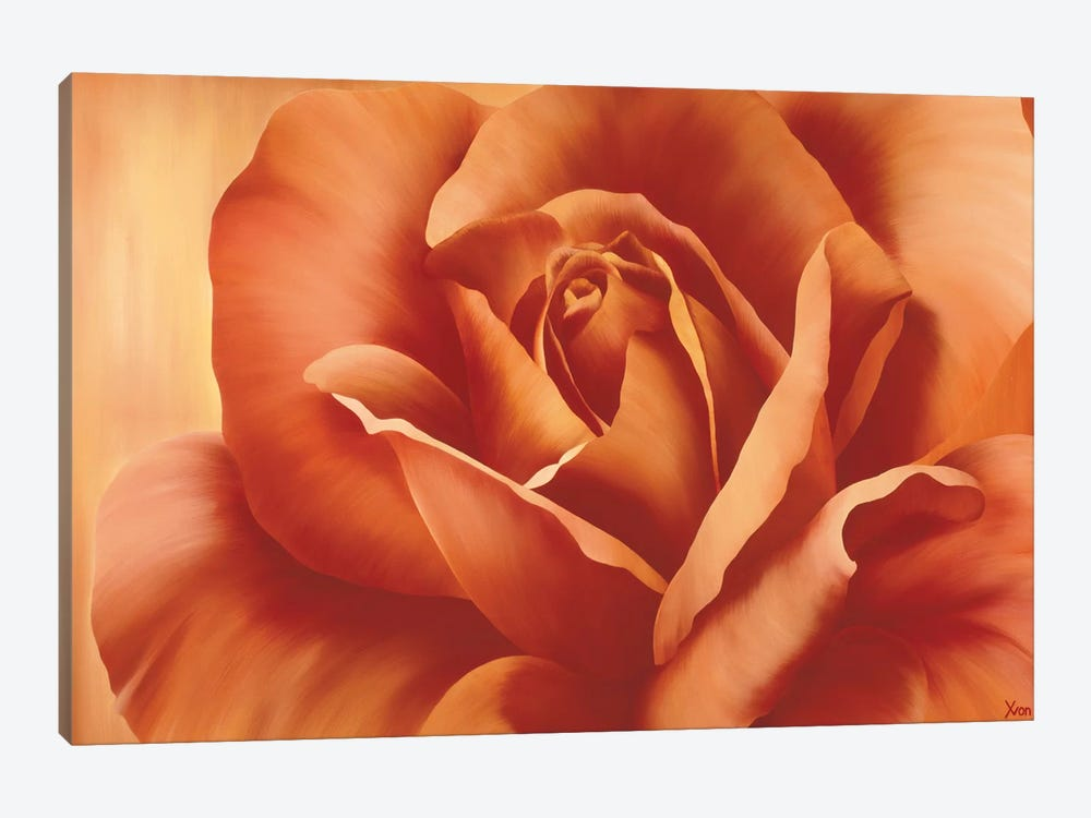 Full In Bloom I by Yvonne Poelstra-Holzhaus 1-piece Canvas Art