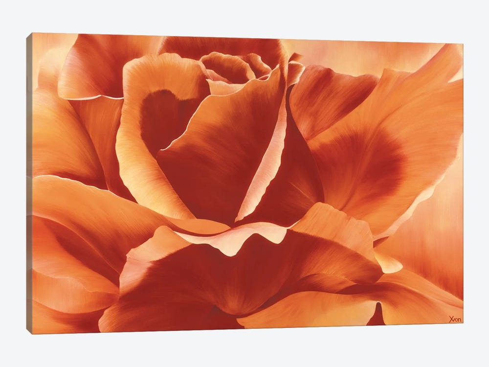 Full In Bloom II by Yvonne Poelstra-Holzhaus 1-piece Canvas Art Print