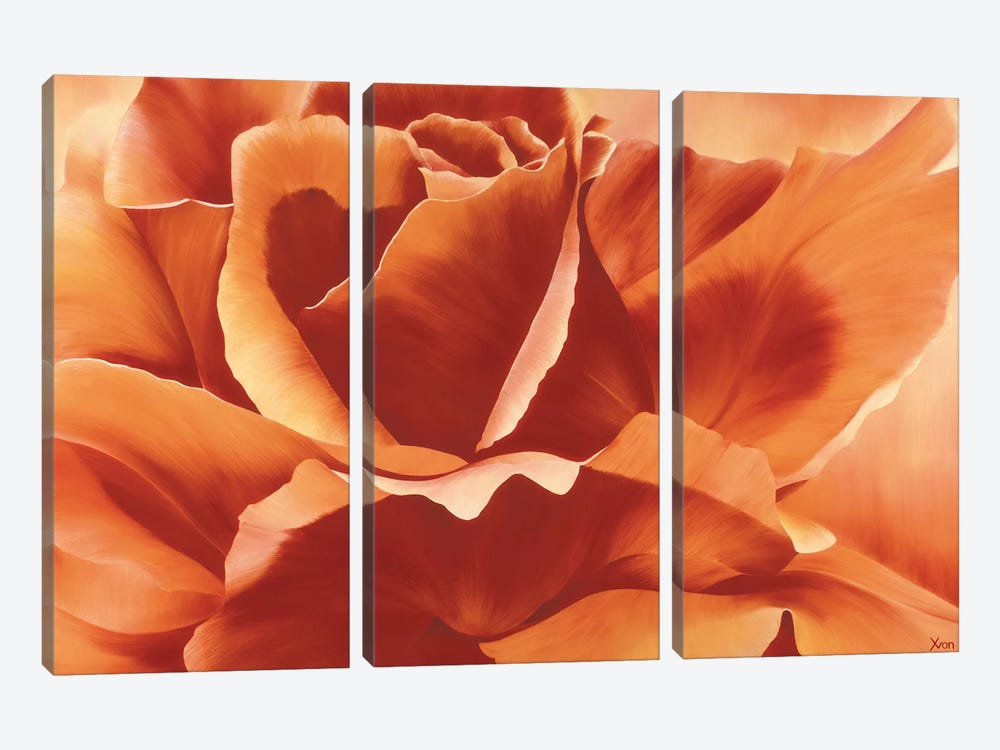 Full In Bloom II by Yvonne Poelstra-Holzhaus 3-piece Canvas Print