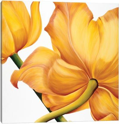 King Yellow Canvas Art Print