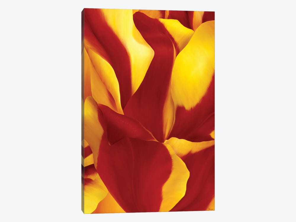 Magnificent Flower II by Yvonne Poelstra-Holzhaus 1-piece Canvas Print