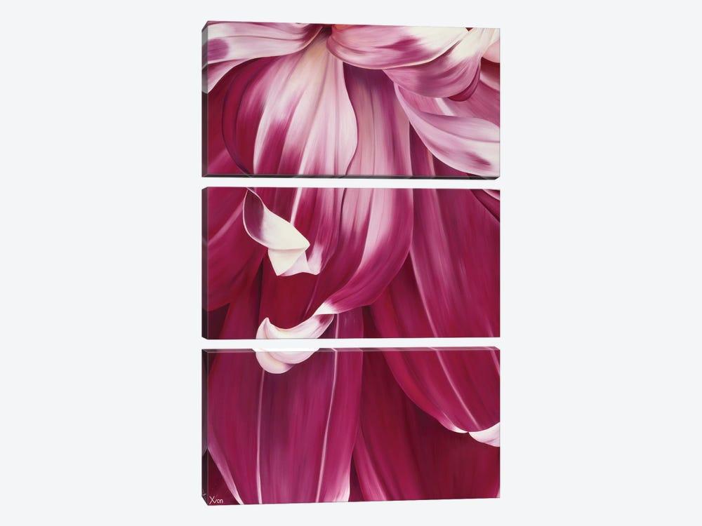 Arti Tulip I by Yvonne Poelstra-Holzhaus 3-piece Canvas Art Print