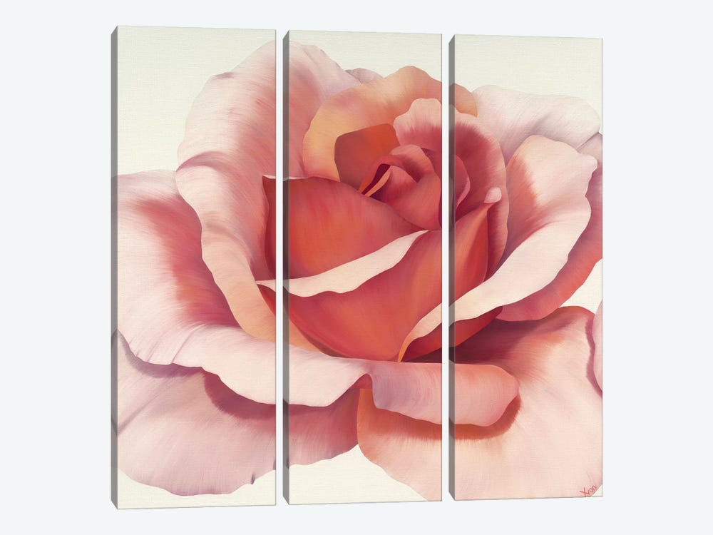 Magnificence IV by Yvonne Poelstra-Holzhaus 3-piece Canvas Wall Art
