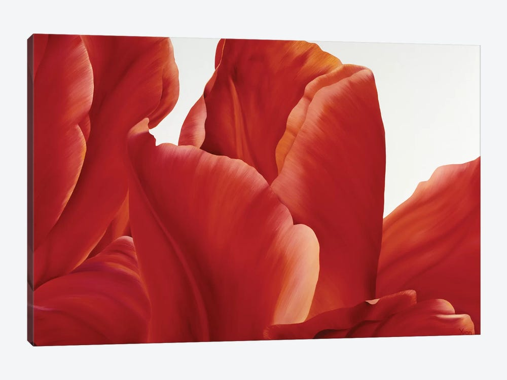 Party Tulip I by Yvonne Poelstra-Holzhaus 1-piece Canvas Artwork