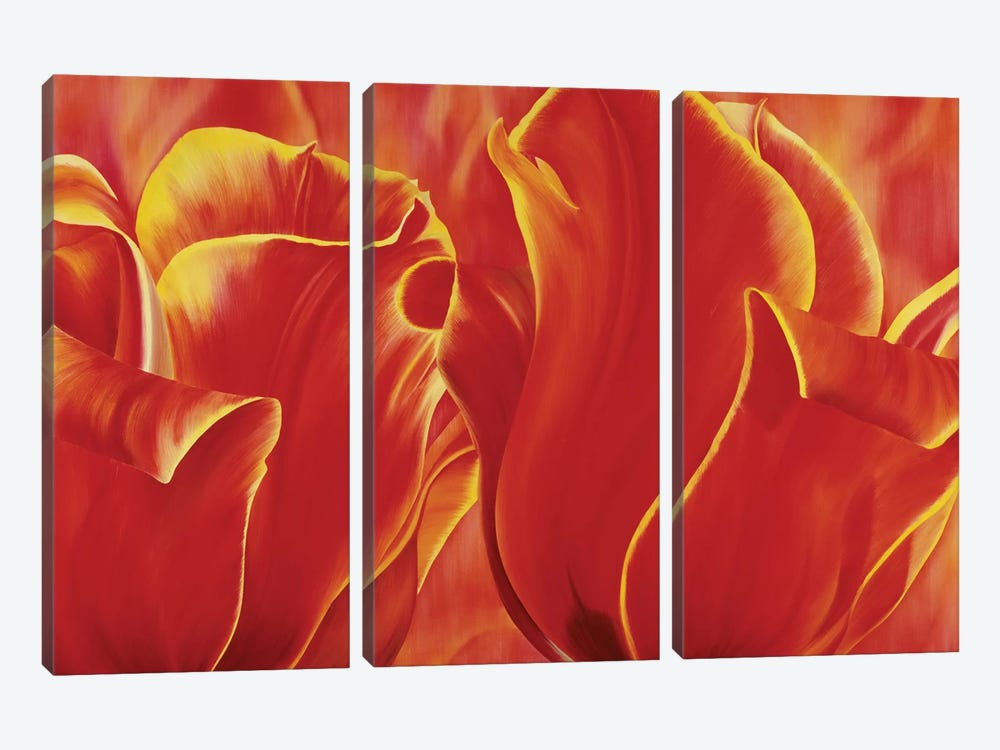 Party Tulip II by Yvonne Poelstra-Holzhaus 3-piece Canvas Print