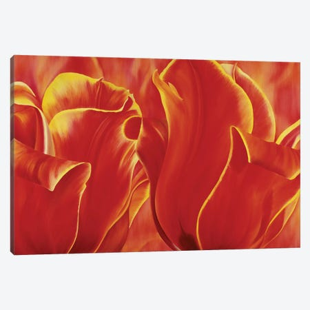 Party Tulip II Canvas Print #YPH39} by Yvonne Poelstra-Holzhaus Canvas Wall Art