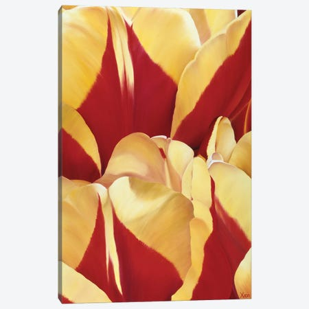 Arti Tulip II Canvas Print #YPH3} by Yvonne Poelstra-Holzhaus Canvas Artwork
