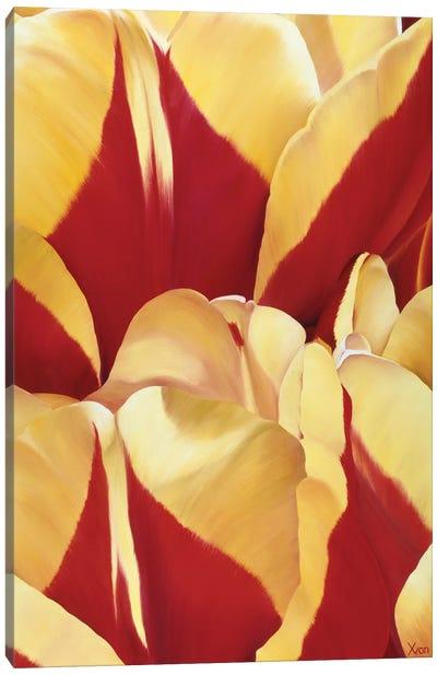 Arti Tulip II Canvas Art Print