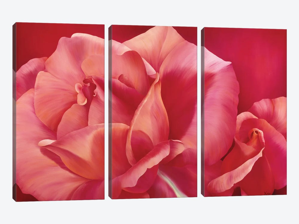 Pink Rose I by Yvonne Poelstra-Holzhaus 3-piece Canvas Art Print