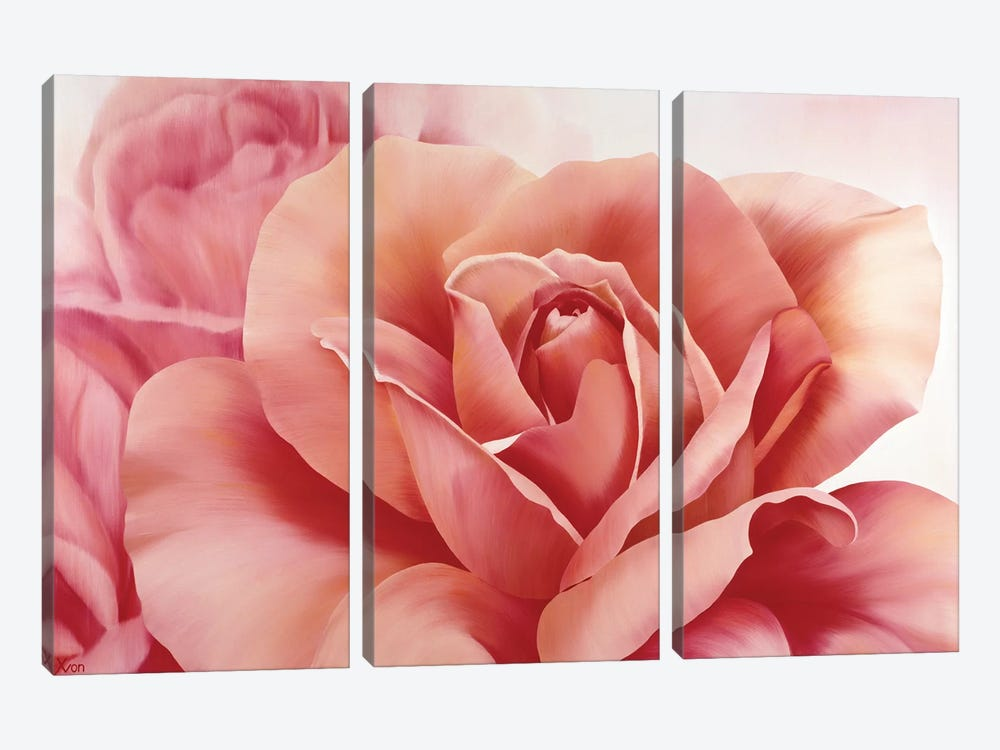 Pink Rose II by Yvonne Poelstra-Holzhaus 3-piece Canvas Wall Art