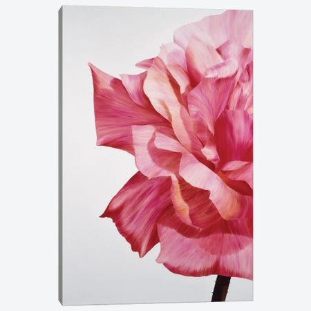 Pink Twin I Canvas Print #YPH42} by Yvonne Poelstra-Holzhaus Canvas Art Print