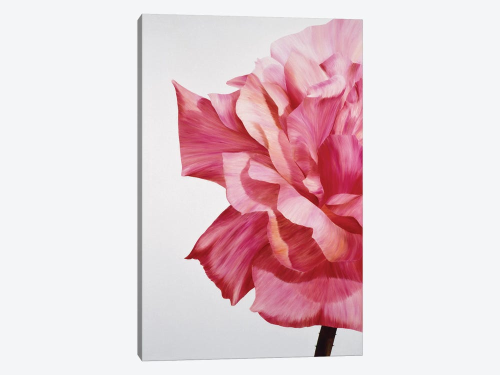 Pink Twin I by Yvonne Poelstra-Holzhaus 1-piece Canvas Art Print