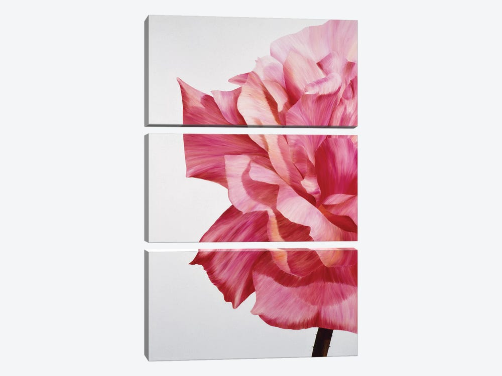 Pink Twin I by Yvonne Poelstra-Holzhaus 3-piece Canvas Art Print