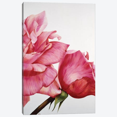 Pink Twin II Canvas Print #YPH43} by Yvonne Poelstra-Holzhaus Canvas Art Print
