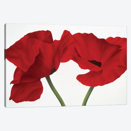 Poppy Red Canvas Print #YPH44} by Yvonne Poelstra-Holzhaus Canvas Artwork