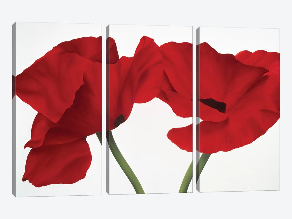 Poppy Red by Yvonne Poelstra-Holzhaus 3-piece Canvas Art Print