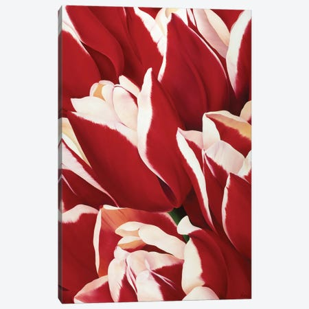 Red & White II Canvas Print #YPH48} by Yvonne Poelstra-Holzhaus Art Print