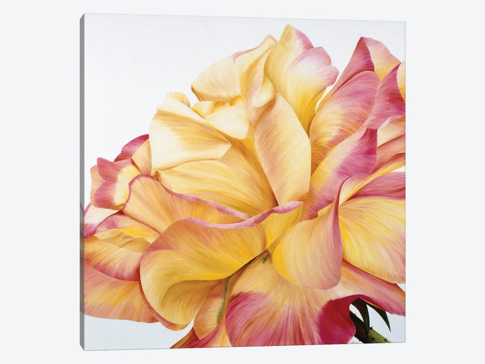 Beautiful Rose by Yvonne Poelstra-Holzhaus 1-piece Canvas Art Print