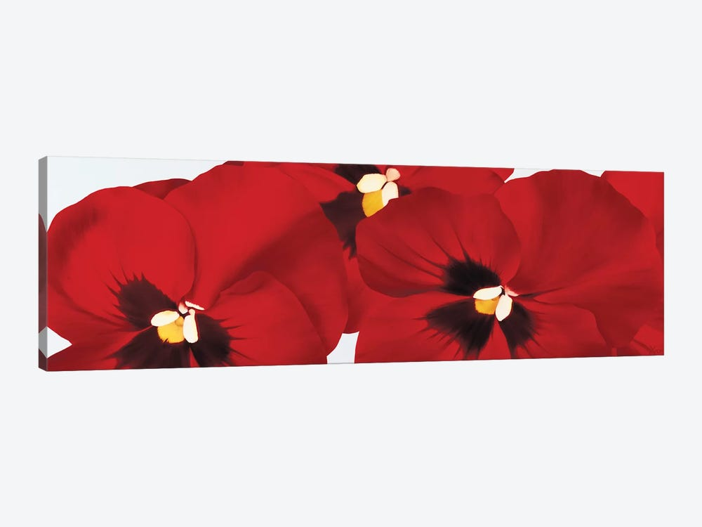 Red I (Pansies) by Yvonne Poelstra-Holzhaus 1-piece Canvas Artwork
