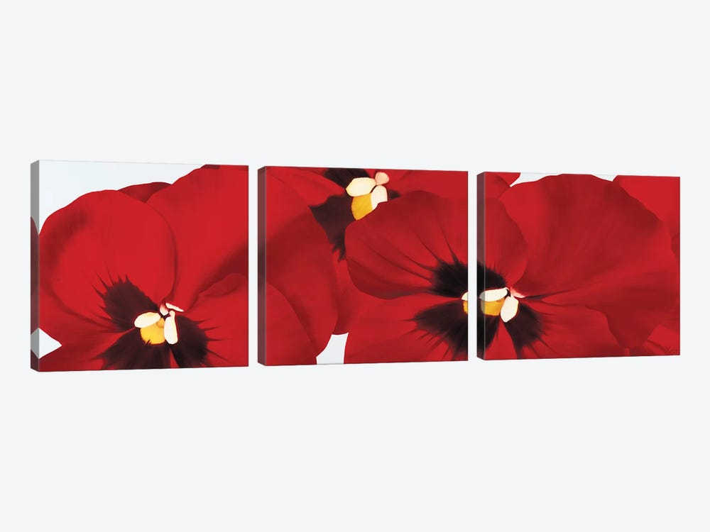 Red I (Pansies) by Yvonne Poelstra-Holzhaus 3-piece Canvas Art
