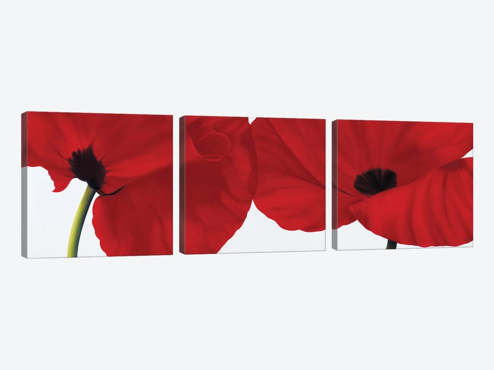 Red II (Poppies) by Yvonne Poelstra-Holzhaus 3-piece Art Print