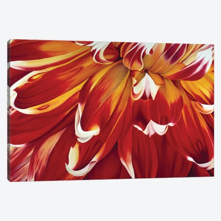 Redony Canvas Print #YPH53} by Yvonne Poelstra-Holzhaus Canvas Art