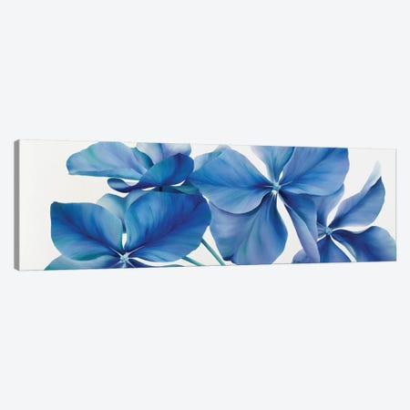 Shiny Bleu Canvas Print #YPH54} by Yvonne Poelstra-Holzhaus Canvas Print