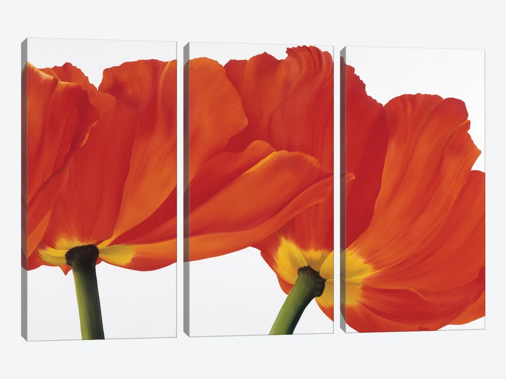 Spring Dance by Yvonne Poelstra-Holzhaus 3-piece Canvas Art