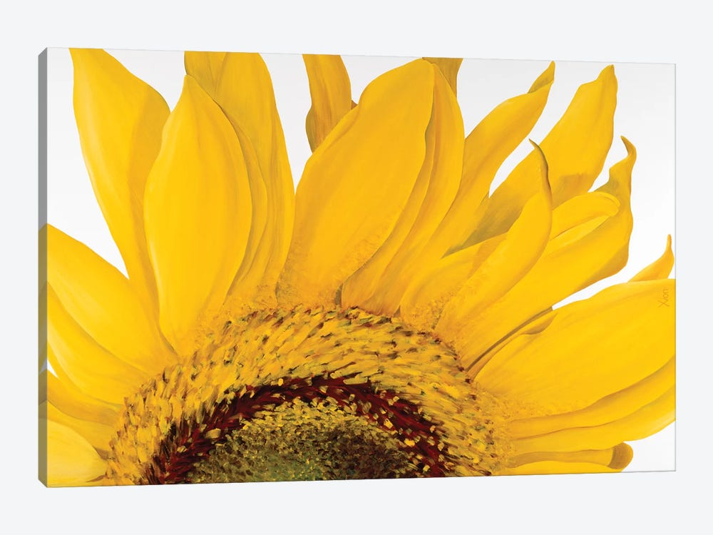 Sunflower I by Yvonne Poelstra-Holzhaus 1-piece Canvas Art