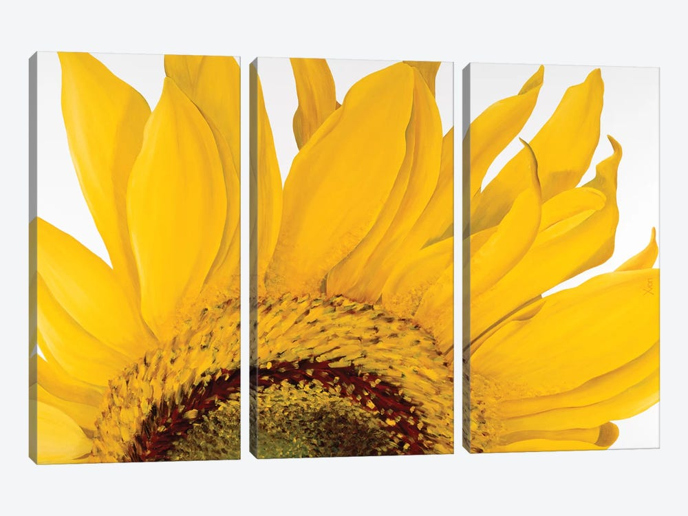 Sunflower I by Yvonne Poelstra-Holzhaus 3-piece Canvas Wall Art