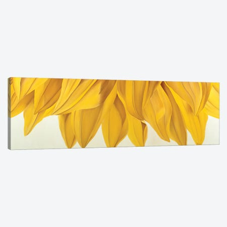 Sunny Yellow Canvas Print #YPH60} by Yvonne Poelstra-Holzhaus Canvas Art Print