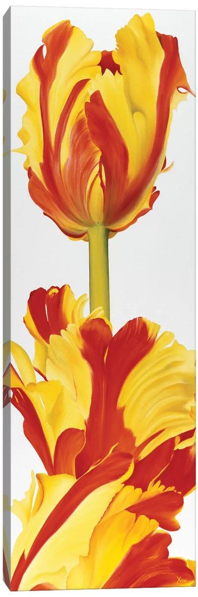 Taller Then You! Canvas Art Print