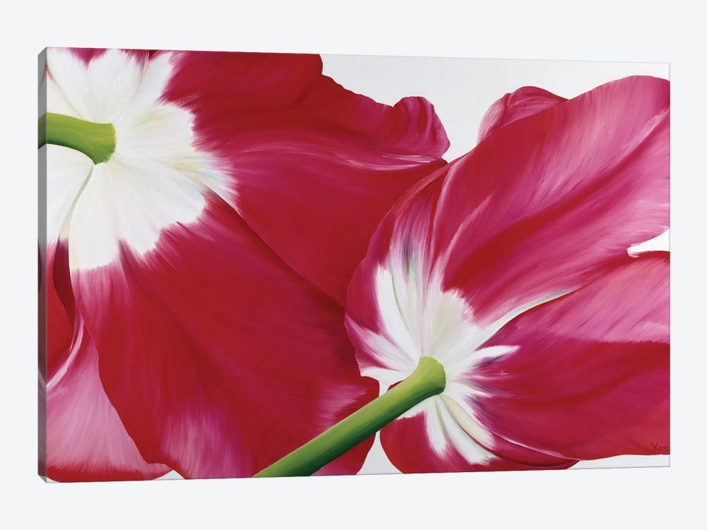 Tulipa 1-piece Canvas Art
