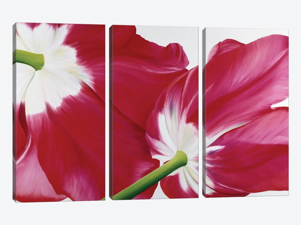 Tulipa by Yvonne Poelstra-Holzhaus 3-piece Canvas Art