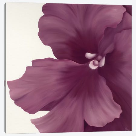 Violet Flower I Canvas Print #YPH64} by Yvonne Poelstra-Holzhaus Canvas Artwork