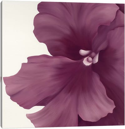 Violet Flower I Canvas Art Print